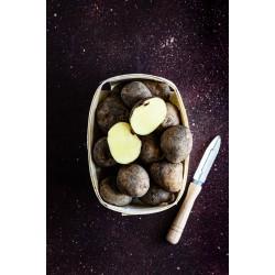 Ziemniaki (1 kg)