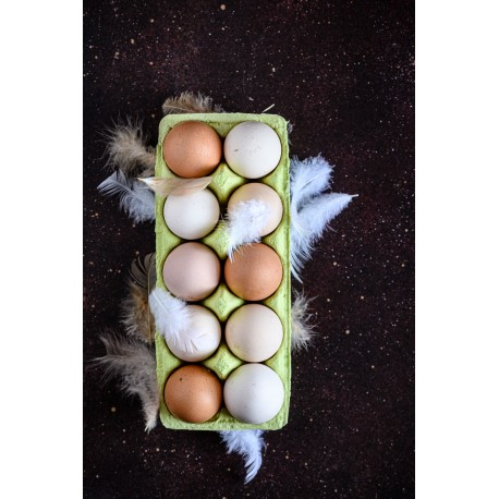 Jajka ekologiczne rozmiar M (10 sztuk)