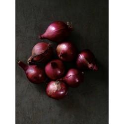 Cebula czerwona eko 1 kg