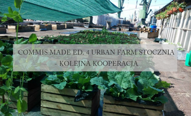Commis Made ed. 4 Urban Farm Stocznia – kolejna kooperacja